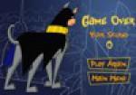 Batman Köpeği Oyna