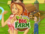 Big Farm Oyna