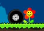 Çiçekleri Ez Oyna