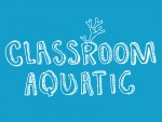 Classroom Aquatic Oyna