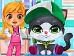 Kedi Doktoru Oyna