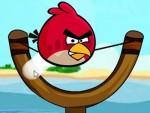 Kızgın Kuşlar Oyna