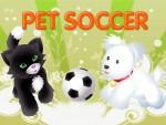 Köpek Futbol Oyna