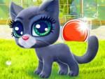 Mutlu Kedi Oyna
