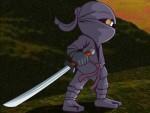 Ninja 2 Oyna