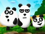 Panda Kardeşler Oyna