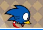 Sonic Kuş Oyna