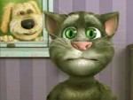 Talking Tom Oyna