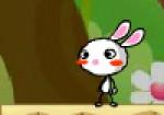 Tavşan Kaç Oyna