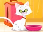 Tom Kedi Besleme Oyna