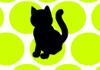 Kara Kedi Oyna